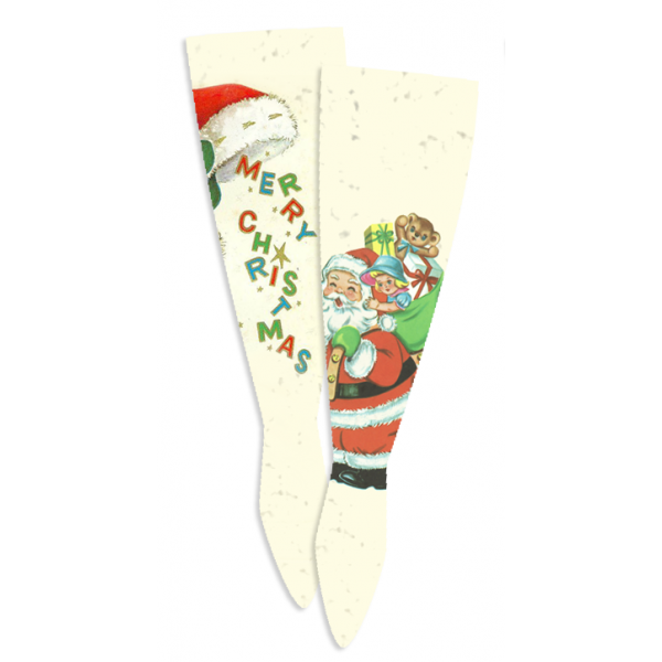 Santa Claus is Coming to Town Socks